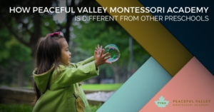 HOW PEACEFUL VALLEY MONTESSORI ACADEMY IS DIFFERENT FROM OTHER PRESCHOOLS