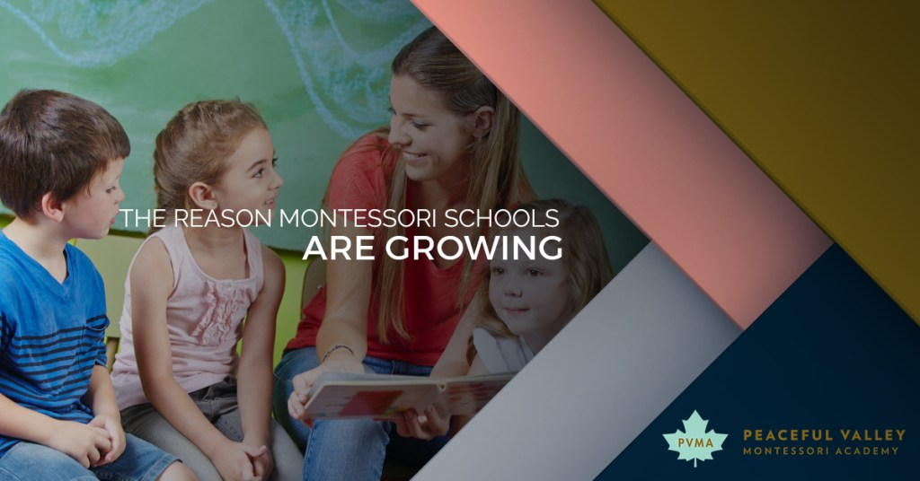 THE REASON MONTESSORI SCHOOLS ARE GROWING