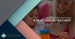WHAT DOES IT TAKE TO BE A MONTESSORI TEACHER?