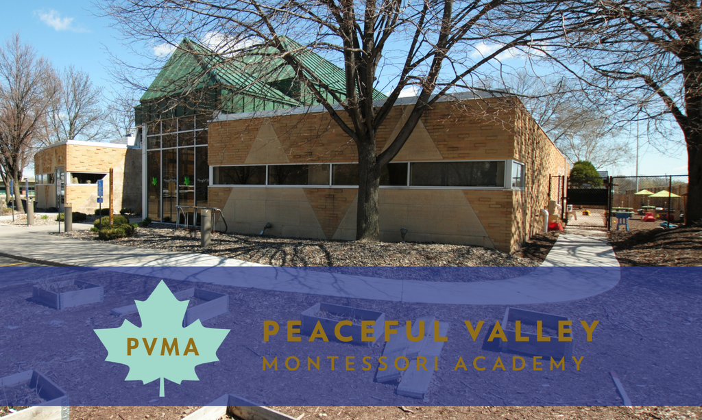 PVMA: OUR STORY